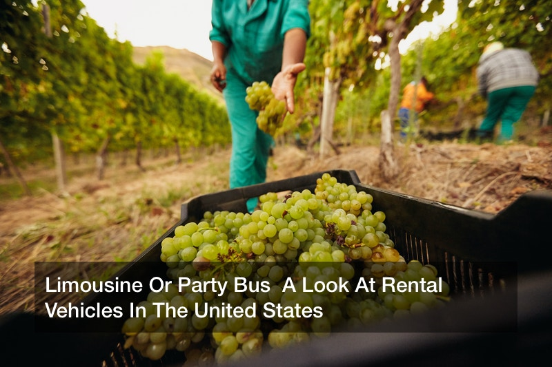 Limousine Or Party Bus  A Look At Rental Vehicles In The United States